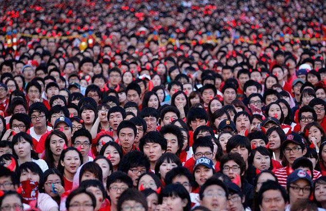 китайцы едут за донорами яйцеклеток